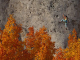Climber on a Cliff Wall Photographic Print by Bill Hatcher