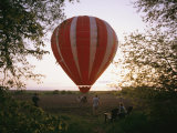 A Hot Air Balloon Lands in a Farm Pasture Near Walton, Nebraska Photographic Print by Joel Sartore
