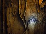 Negative Handprint Adorns the Wall of a Maya Cave in Belize Photographic Print by Stephen Alvarez