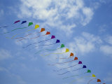 Kites Fly in a Rainbow of Colors at the Jockeys Ridge Kite Festival Fotografie-Druck von Stephen Alvarez