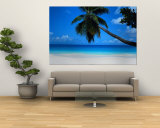 Seychelles Wall Mural