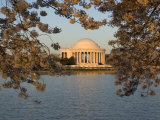 Cherry Trees in Bloom Around the Tidal Basin and Jefferson Memorial Photographic Print by Charles Kogod