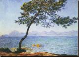 Antibes, boom aan zee Kunstdruk op gespannen doek van Claude Monet