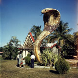 Vacationers Looking at Statue of Huge Cobra Outside Small Bldg Photographic Print by Hank Walker