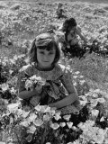 Children Playing in a Field of Wildflowers Premium Photographic Print by J. R. Eyerman