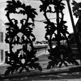 View Through Acorn Iron Grillwork of Rows of Cheap Sporting Houses Photographic Print by David Scherman