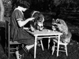 Claire Shorrock Giving Ice Cream Party with Pet Dog and Raccoon Photographic Print