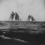 The British Sailboat Gaining on the American During the America's Cup Race in New York Harbor Photographic Print by Wallace G. Levison