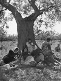 Peasants Working in Olive Groves South of Monopoli Taking a Siesta After Lunch under Favorite Tree Photographic Print by Alfred Eisenstaedt