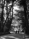 Entrance to the Issai Shinto Shrine, Japan Premium Photographic Print by Alfred Eisenstaedt