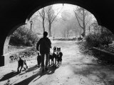 Dog Walker in Central Park Premium Photographic Print by Alfred Eisenstaedt