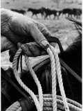Close Up on Weather Beaten Hand of Whistle Mills Ranch Foreman Holding Rope Premium Photographic Print by John Loengard