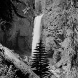 Lower Waterfall of the Yellowstone River in Yellowstone National Park Photographic Print by Alfred Eisenstaedt