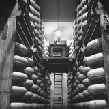 Cheeses Being Washed at Cheese Factory Photographic Print by William Vandivert