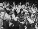 Chorus Girls Dancing at Atlantico Casino Premium Photographic Print by Hart Preston