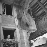 Drying Flax Hanging from Rafters of Swiss Farmhouse Fotografie-Druck von William Vandivert