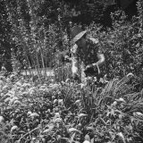 Mrs. David Smith Working in the Garden Photographic Print by Hansel Mieth