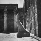 Large Statue of Falcon in Court of Temple at Edfu Photographic Print by Eliot Elisofon