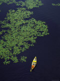 Aerial View of Man Canoeing in Lily Padded Lake in the Upper Peninsula Premium Photographic Print by John Olson