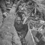 Soldier Taking Cover in Jungle Photographic Print by William C. Shrout