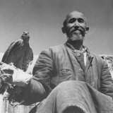Close Up of Farmer Holding Falcon on Wrist Fotografie-Druck von William Vandivert