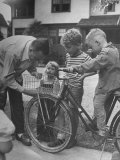 Man Fixing Basket on Bicycle as Children Watch Attentively Premium Photographic Print by Nina Leen