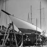 Ships Resting in Shipyard Photographic Print by Sam Shere