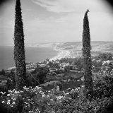 Garden Overlooking the California Pacific Coastline Photographic Print by Nina Leen