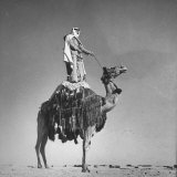 Meharist Standing on Back of Camel as a Sign of Respect Photographic Print by John Phillips