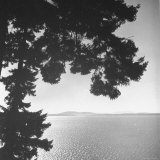 View of Northern Puget Sound Photographic Print by Peter Stackpole