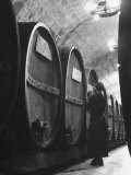 Jesuit Novitiate Winery, Oak Casks of Wine in Underground Tunnel of Winery Premium Photographic Print by Charles E. Steinheimer