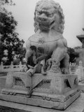 Boy Sitting in the Lap of a Stone Lion Premium Photographic Print by George Lacks