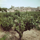 Vineyard and Village Along Rhone Near Avignon Photographic Print by Gjon Mili