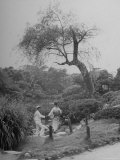Japanese Man and Wife Strolling Through Hibiya Park Premium Photographic Print by John Florea