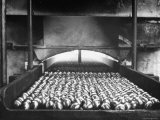 Ball Bearings Going Into Hardening Furnace Premium Photographic Print by Carl Mydans