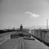 Man Walking Atop a Freight Train Heading Westbound Photographic Print by Sam Shere