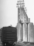 Exterior View of the Gold Medal Flour Mill Premium Photographic Print by Wallace Kirkland
