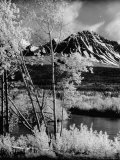 Deazdeash Mountains and River in the Yukon Territory Premium Photographic Print by J. R. Eyerman