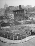London's East End Residents Cultivating Vegetable Garden in Bombed Ruins Premium Photographic Print by Hans Wild