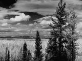 Beautiful Scene of the Countryside as Seen from the Alcan Highway Photographic Print by J. R. Eyerman