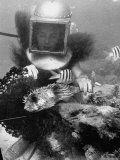 Diver Meddling Around with a Blowfish in Hartley's Underwater Movie in Bermuda Photographic Print by Peter Stackpole