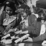 Leg Splints Are Applied to a Cat by Members of La Mesa Troop 591 For Their Cat and Dog Badge Photographic Print by Ed Clark