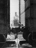 Wartime Railroad: Yemassee Junction Crossover, Atlantic Coast Line, Charleston and Western Carolina Premium Photographic Print by Alfred Eisenstaedt