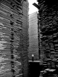 Man Standing in the Lumberyard of Seattle Cedar Lumber Manufacturing Fotoprint van Alfred Eisenstaedt