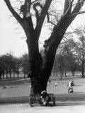 Couple Embracing in a Passionate Moment on the Bench in Hyde Park Lámina fotográfica de primera calidad por Cornell Capa