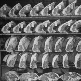 Cuts of Beef on Shelves at Meat Processing and Packing Plant Photographic Print by Alfred Eisenstaedt