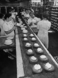 Cakes Being Frosted in A&P Plant Premium Photographic Print by Herbert Gehr