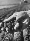 Farmer Holding a Handful of Soil Photographic Print by Ed Clark