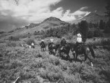 Family Vacationers Riding Pack Mules Into Hills For Some Camping, Rocky Mountain Auto Tour Premium Photographic Print by Eliot Elisofon