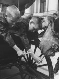 Boys Feeding Carrots to Horse Premium Photographic Print by Stan Wayman